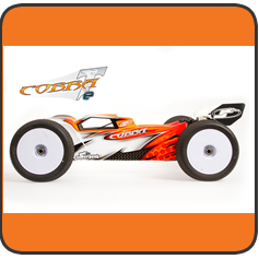 Cobra E-truggy